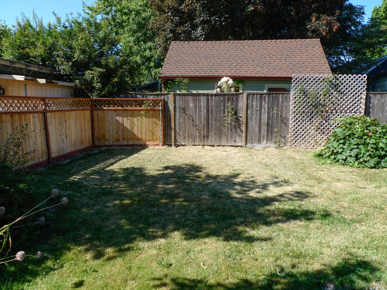 Our backyard when we moved in in August 2011