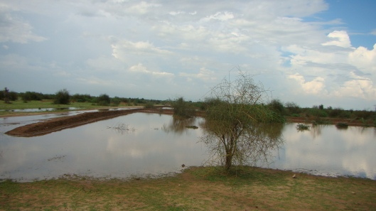 Chaukas during monsoon