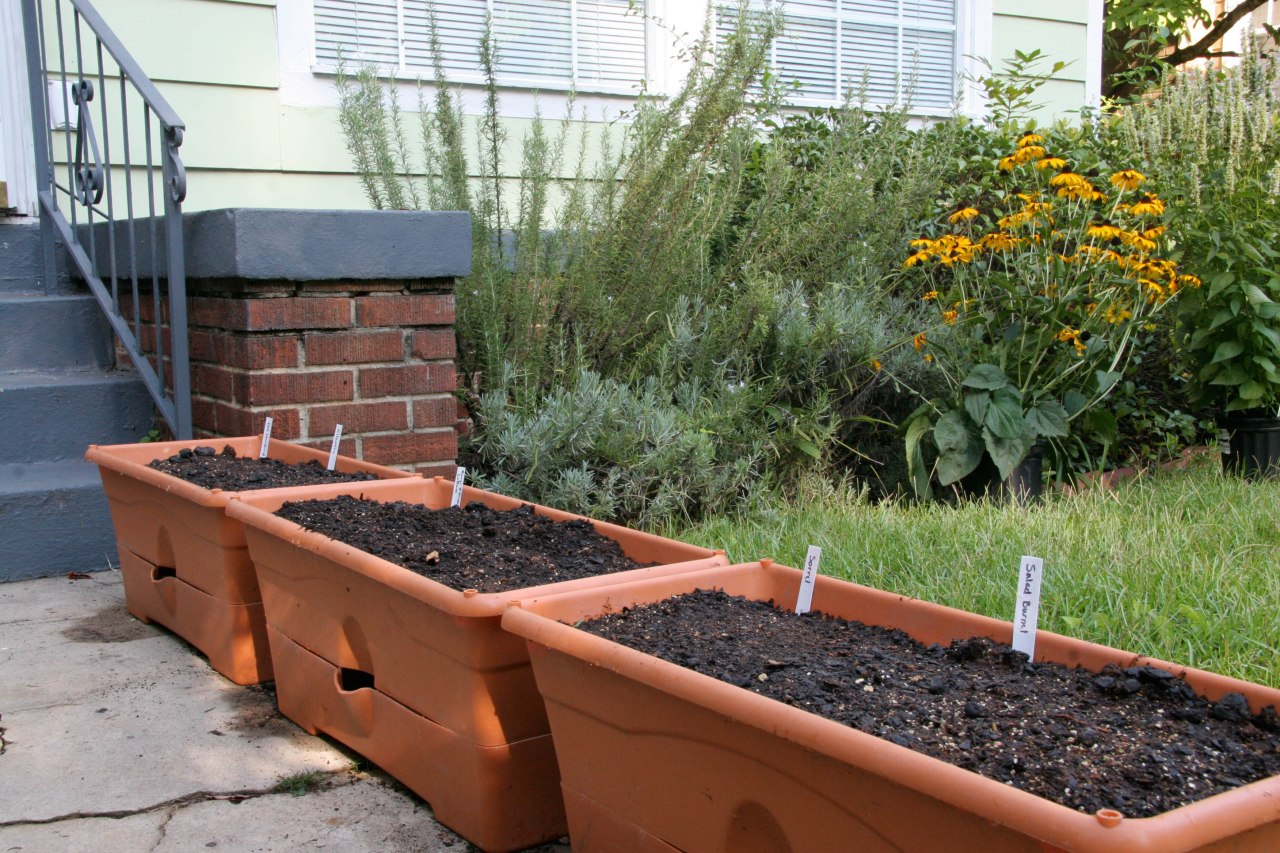 containerplanting-5