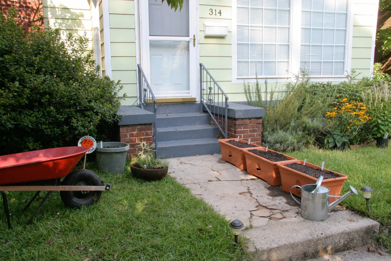 containerplanting2