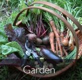 garden3 copy