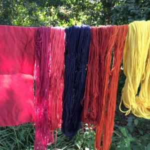 making natural dyes, natural dyeing, logwood, brazilwood, madder, osage orange