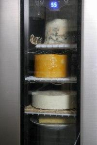 cheese ripening refrigerator