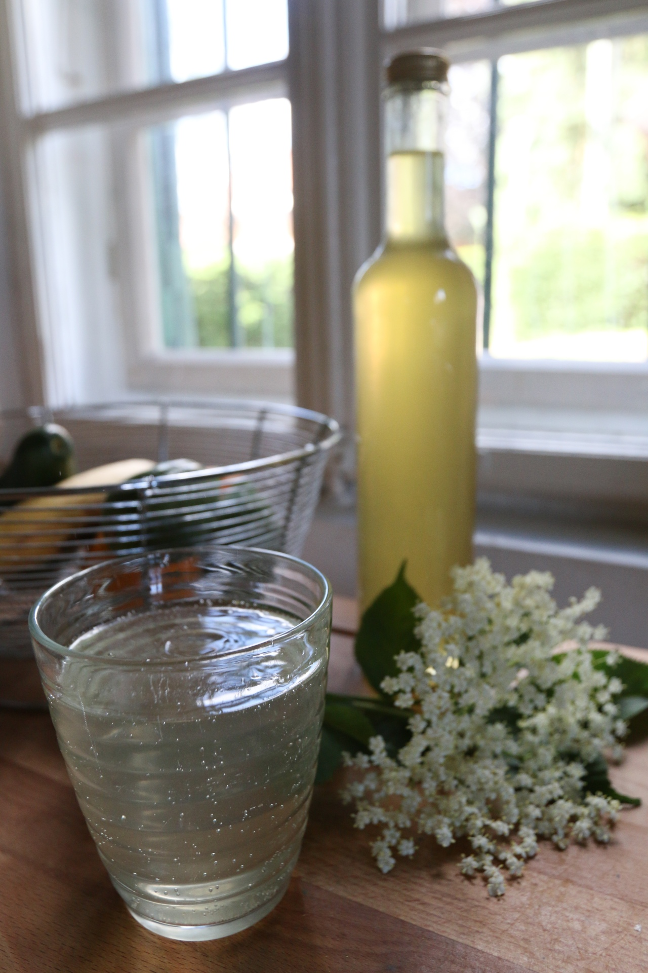 elderflower-4